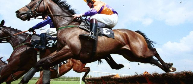 Different Ways Through Which You Can Win The Betting On Horse